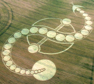 The Cosmic Serpent Kundalini Awakening Crop Circle West Woodhay Down, Wiltshire 29th July 2011